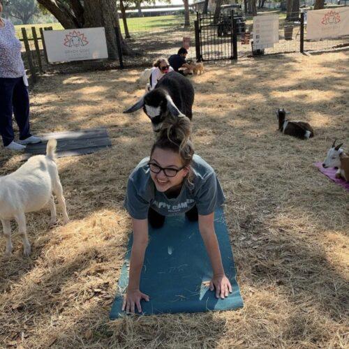 Goat Yoga with Grady Goat Foundation